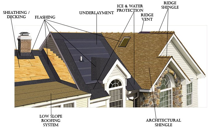 understand your roof system